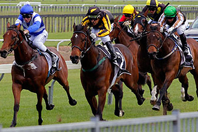 horse racing today