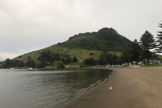 Sunlive grey start to a tauranga day the bay 39 s news first for Best time to fish tomorrow