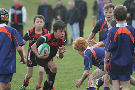 Sunlive Free Junior Rugby At Family Club The Bay S News First